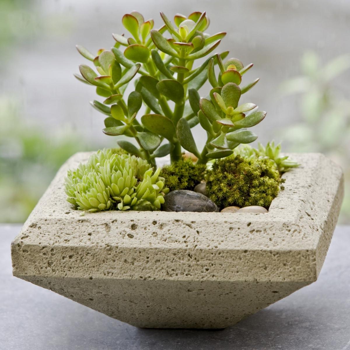 Shop this look: Campania-International-Ada-Cast-Stone-Planter