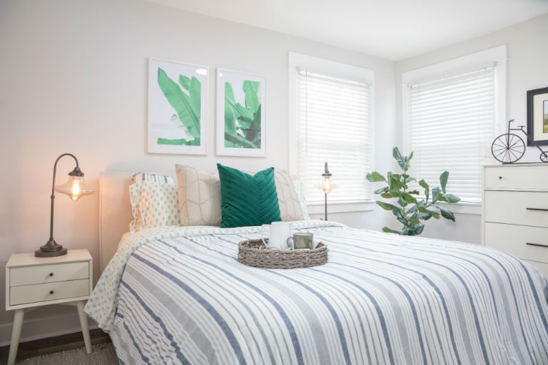 Transitional bedroom with plant wall decor